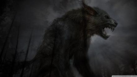 Black fantasy art wolves wallpaper