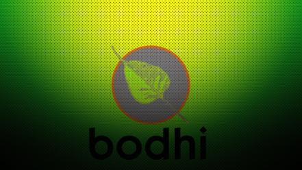 Bodhi linux green wallpaper