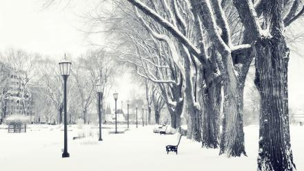 Bench snow trees winter Wallpaper
