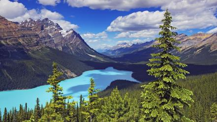 Alberta banff national park canada mount Wallpaper