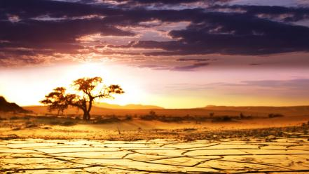 African deserts landscapes nature sunrise wallpaper