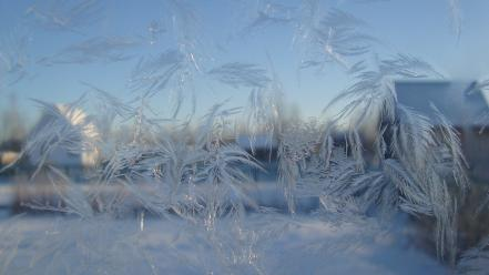 Frosted glass frost wallpaper