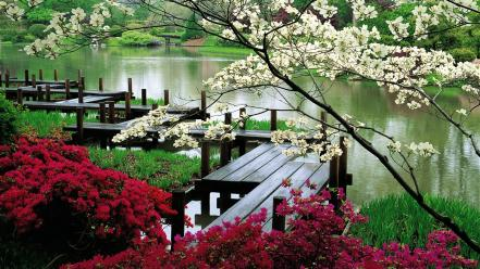 Missouri flowers lakes nature piers wallpaper