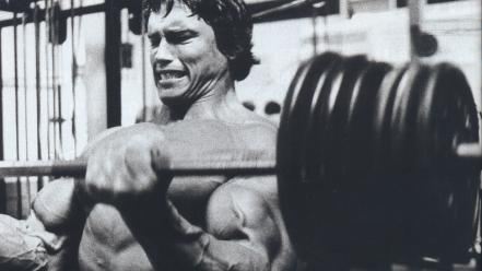 Arnold schwarzenegger muscles training wallpaper