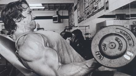 Arnold schwarzenegger muscles weight lifting wallpaper