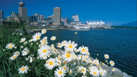 Water flowers city skyline cities white wallpaper