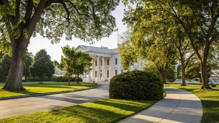 The white house architecture green sidewalk wallpaper