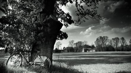 Hdr photography bicycles black and white forests monochrome wallpaper