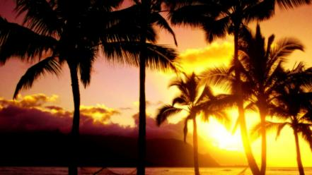 Hawaii afternoon beaches kauai landscapes Wallpaper