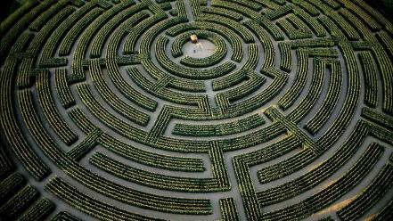France mazes hedges labrinth wallpaper