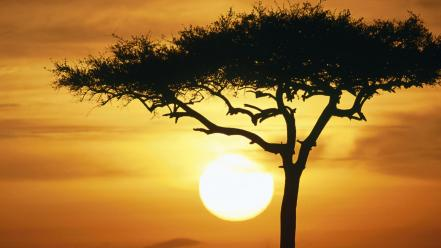 Sunrise blue mara africa kenya wallpaper