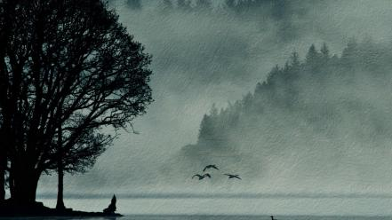 Trees birds silhouette mist sea wallpaper