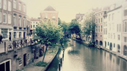 Trees cityscapes urban amsterdam rivers wallpaper