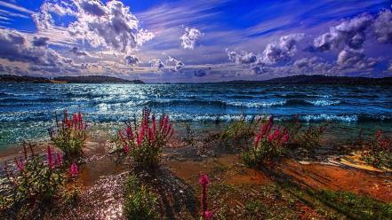 Blue nature beach special sea Wallpaper