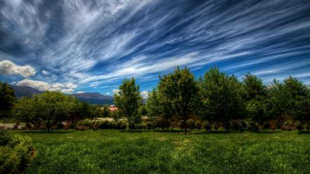 Green clouds landscapes nature trees wallpaper