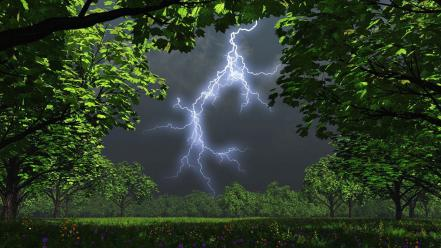 Landscapes nature trees lightning wallpaper