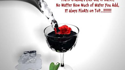 Water ice flowers wall quotes life roses wallpaper