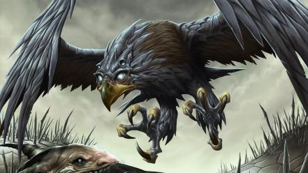 Magic the gathering hawk artwork dave allsop wallpaper