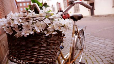 Flowers bicycles italian romantic european morning french baskets Wallpaper