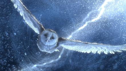 Movies owls legend of the guardians birds Wallpaper