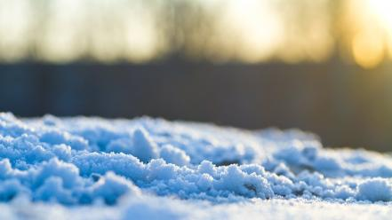 Winter snow macro blurred background wallpaper
