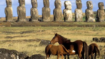 Animals statues easter island moai Wallpaper