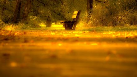 Landscapes nature yellow bench lonely wallpaper