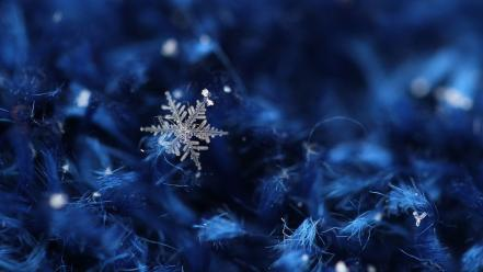 Winter snow ice crystals wallpaper
