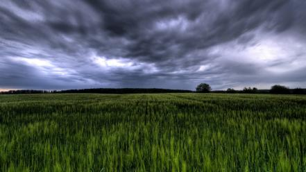 Green landscapes germany wallpaper