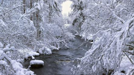 Landscapes winter snow trees rivers wallpaper