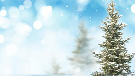 Snow pine trees Wallpaper