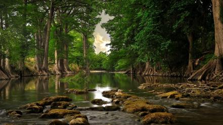 Landscapes nature trees rivers wallpaper
