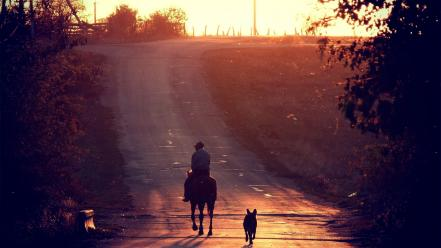 Nature dogs roads horseman wallpaper