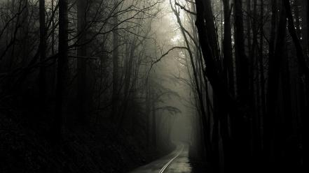 Nature trees dark gothic roads wallpaper