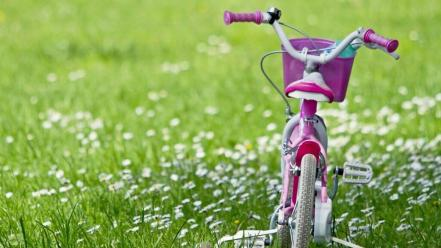 Flowers bicycles grassland wallpaper