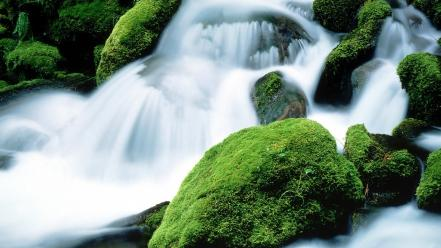 Rocks moss oregon mount jefferson waterfalls wallpaper