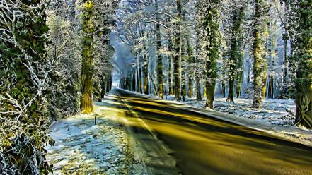 Winter golden journey roads wallpaper