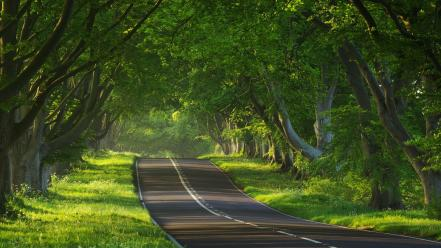 Landscapes nature earth roads viewscape wallpaper
