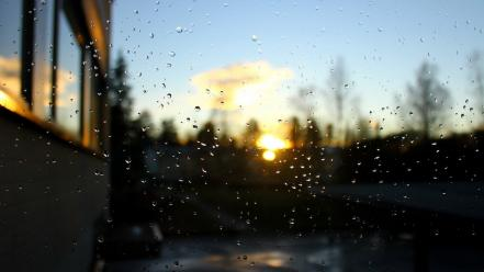 Sunset nature rain bokeh window panes wallpaper