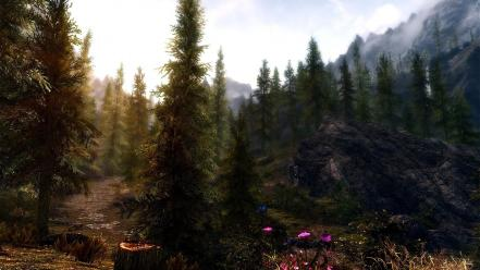 Nature forest the elder scrolls v: skyrim Wallpaper