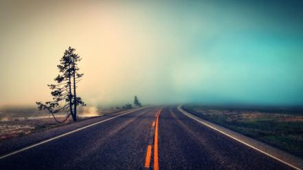 Trees fog roads ambiant wallpaper
