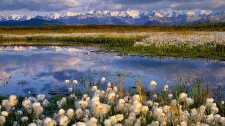 Landscapes nature alaska national park Wallpaper