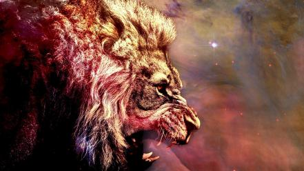 Outer space stars animals lions wallpaper