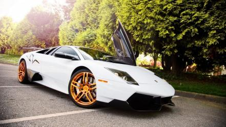 White cars lamborghini murcielago wallpaper