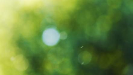 Green minimalistic bokeh blurred wallpaper