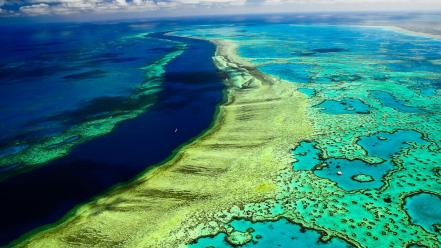 Great barrier reef wallpaper