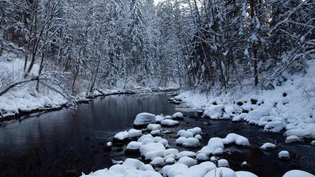 Landscapes nature winter snow trees rivers wallpaper