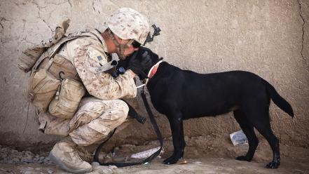 Soldiers army military animals dogs people usa wallpaper