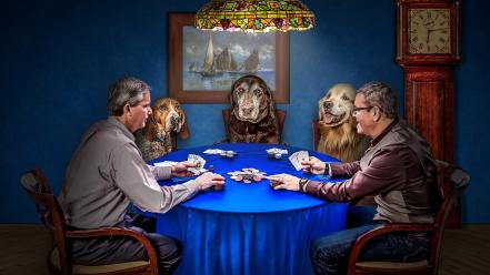 Animals poker dogs funny artwork Wallpaper