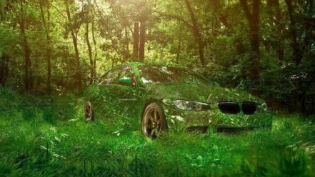 Nature bmw forest cars vehicles green german Wallpaper